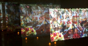 LuzProjections2